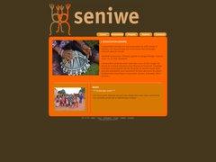 Détails : Danse Africaine Annecy seniwe