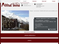 Détails : Altitud'immo, Chamonix