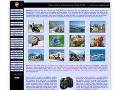Détails : Annecy Haute-savoie Montagne faune flore en photos