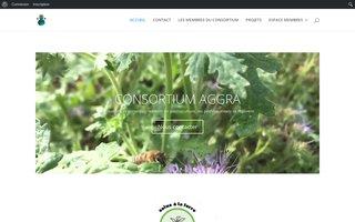 Aggra : regenerer le sol par la fertilite organique