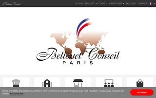 image du site https://www.ecolebellouetconseil.com