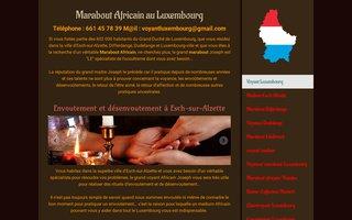 image du site https://www.voyant-luxembourg.lu/