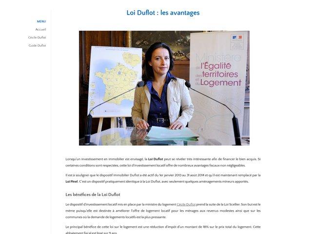 Des revenus supplémentaires grâce à la loi Duflot