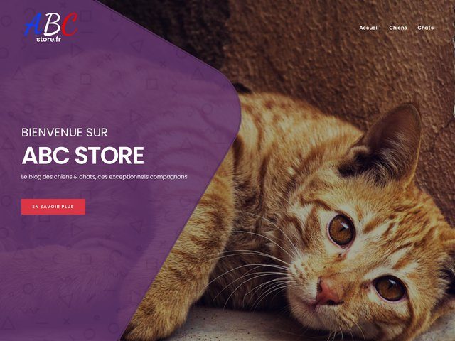 ABC Store - Spécialiste Pioneer