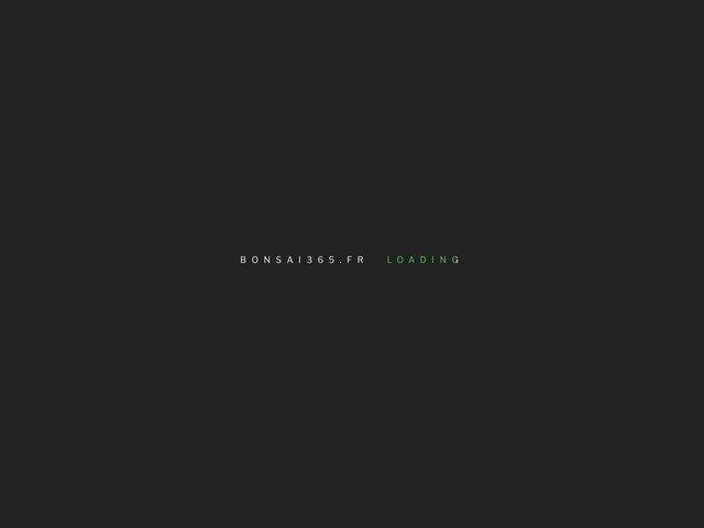 La passion du bonsai au jour le jour
