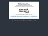Colorboutic.com, imprimeur à lyon ( rhône ) et sur