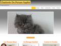Détails : La Chatterie du Persan Saphir