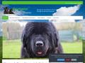 Détails : Elevage de chiens Terre-Neuve dans le Loir-et-Cher
