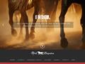 Détails : Elevage de vaches allaitantes et pension pour chevaux