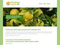 Détails : Extrait de pépin de pamplemousse sur citrobiotic Shop