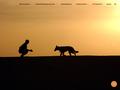 Détails : Blog d'un éducateur pour chiens