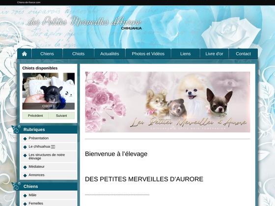 image du site http://petitesmerveillesdaurore.chiens-de-france.com/