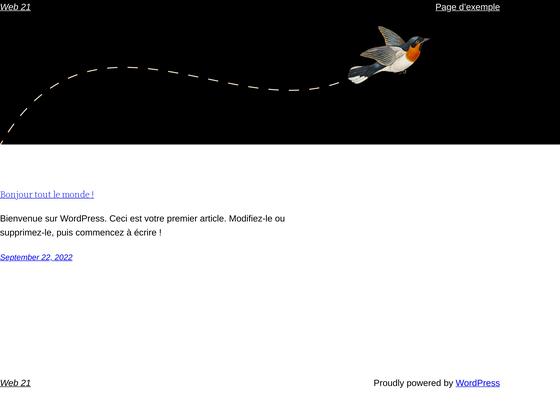 image du site http://web21.ca/