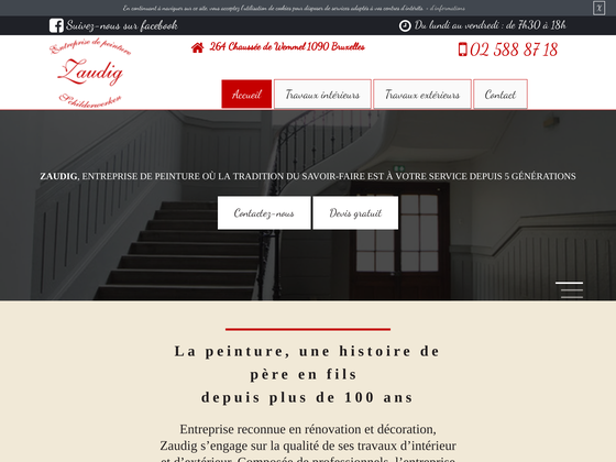 image du site http://www.zaudig-peinture.be/