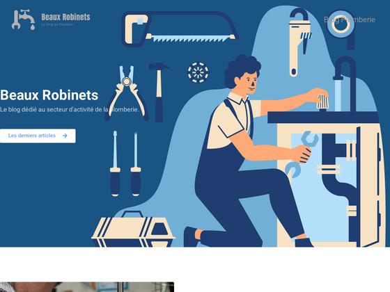 image du site https://beauxrobinets.fr/