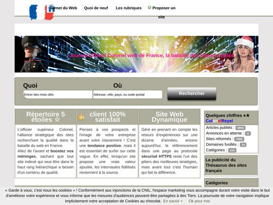 image du site https://colonelreyel.fr/