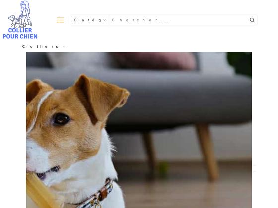 image du site https://meilleurcollierdechien.fr