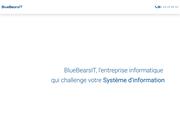 Blue Bears IT Infogérance à Lyon
