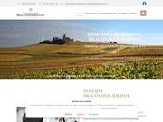 Champagne Braconnier-Baudot